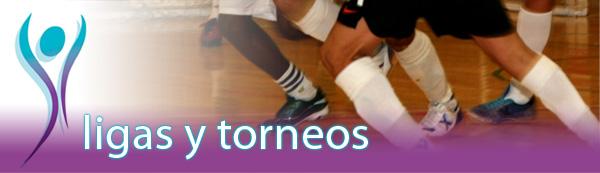 Ligas y Torneos de Fútbol